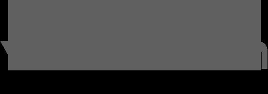 logo horizontal de sewan en gris